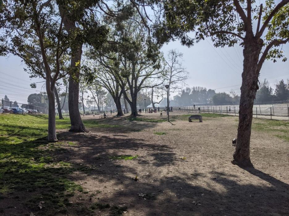 Home Run Dog Park