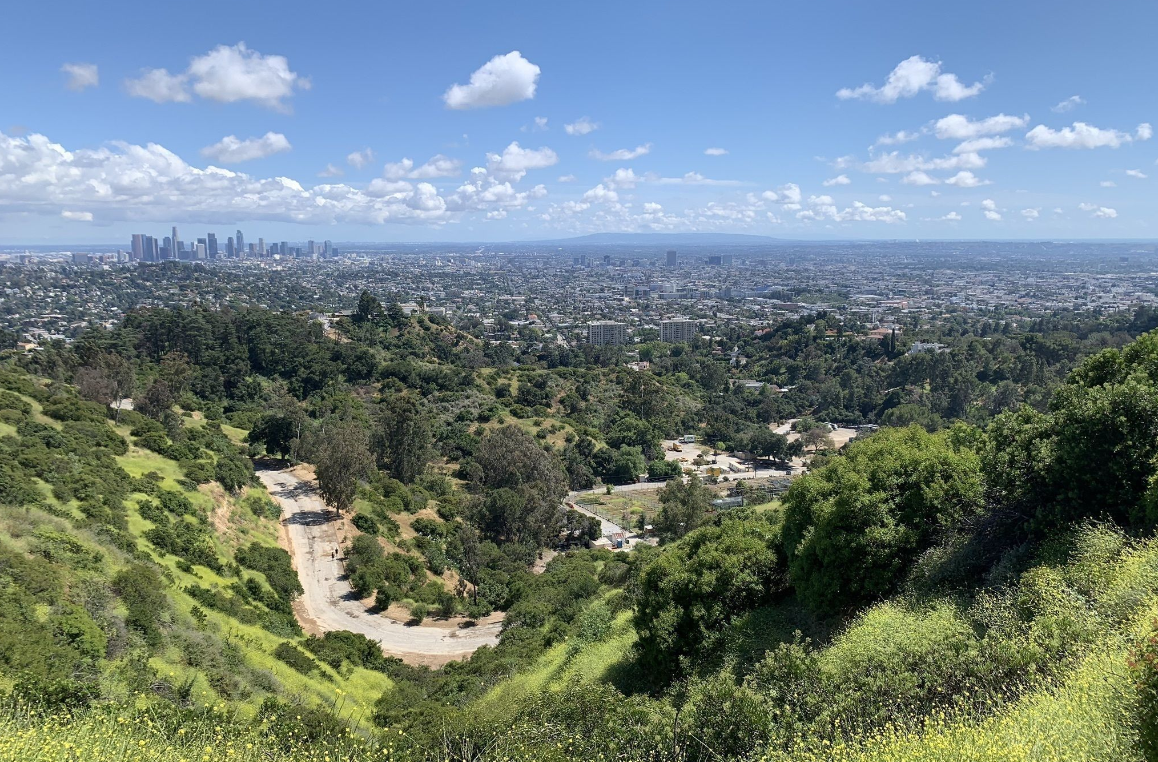 Hike to Fern Canyon Trail at Griffith Park